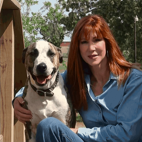 Dog training overview includes this photo of trainer, Vicki Nourse