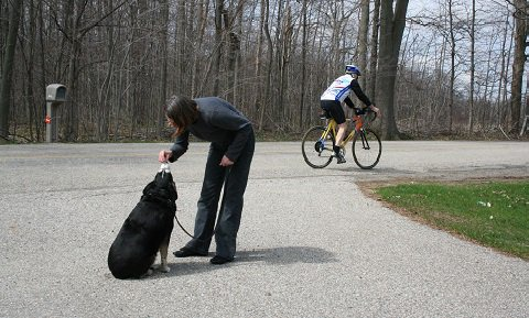 a dog sitting and accepting a treat from his master