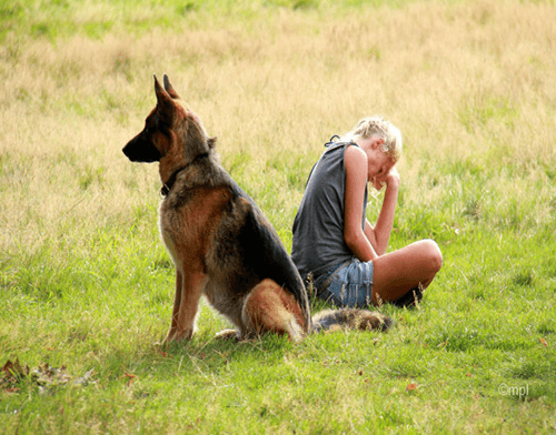 A woman and a dog sit back-to-back, disgusted with each other. An experienced trainer can make all the difference.