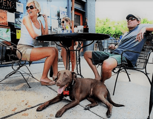 A well-trained dog is a pleasure to take out in public. Here we see a couple sitting with relaxed dog at outdoor cafe.