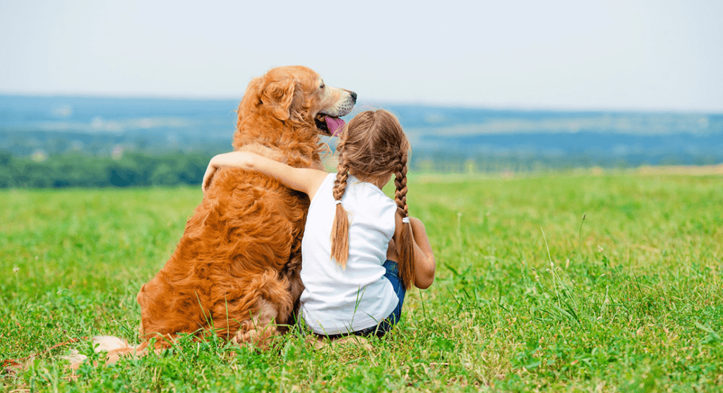 A dog sitting contentedly with a child